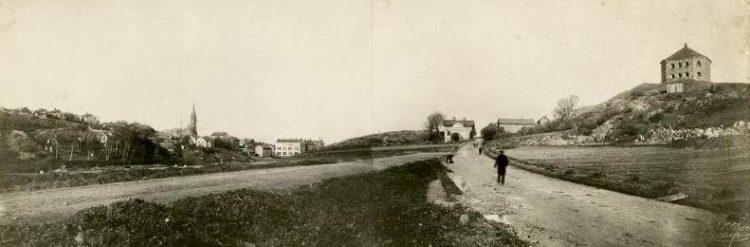 Linne-1890-tal