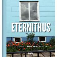 Eternithus från Byggfabriken